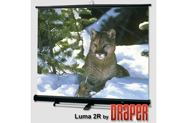 Draper Luma 2/R Portable Projection Screen